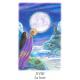 Vision Quest Tarot indiens et chamanes